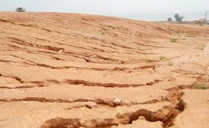 Why The Soil Will Be Dead By 2030?