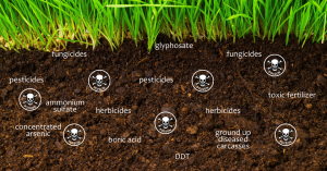 what is the future of organic farming