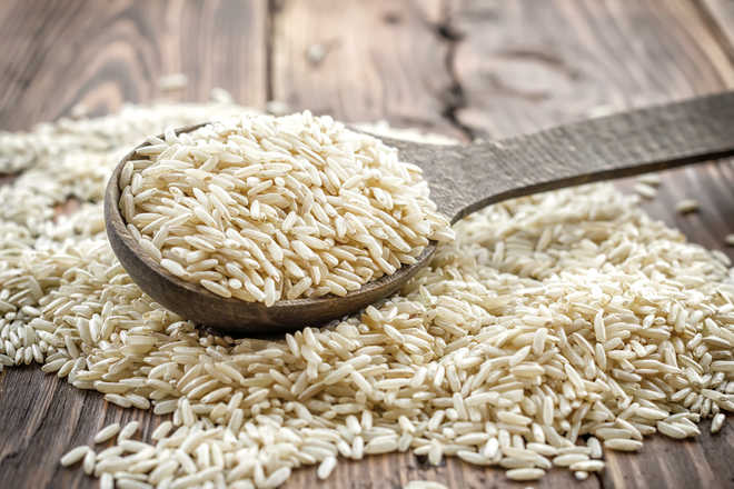 Is Rice Good Or Bad